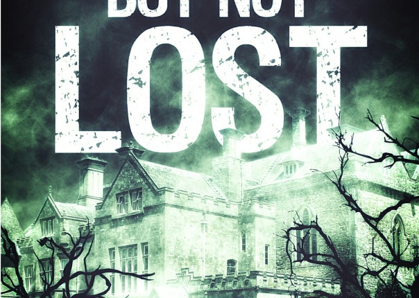 Book Review: Alone But Not Lost by BobSummer